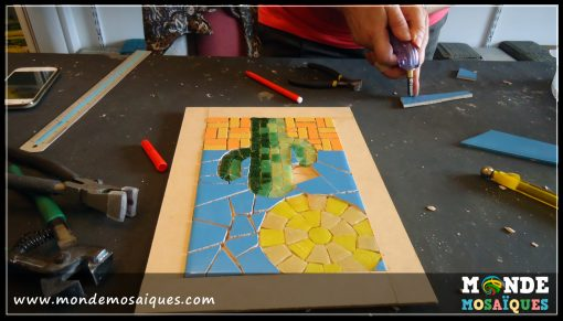Cactus en mosaico. Circumactum, paladianum