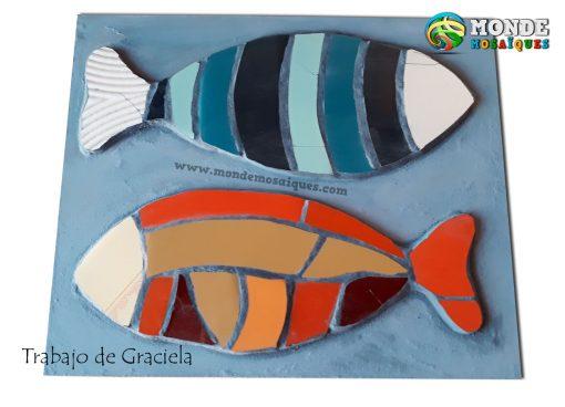 peces azulejos colores